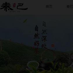 茶叶专卖网站商城建设案例